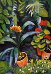 Macke, August: Blumen im Garten, Clivia und Peralgonien, 1911 (Plakat)